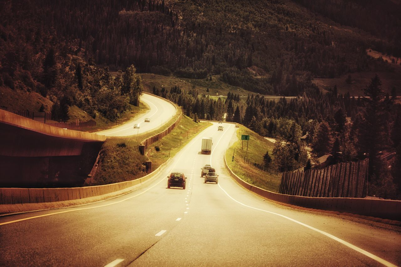 road, transportation, the way forward, connection, illuminated, curve, light trail, tree, winding road, mountain road, nature, outdoors, no people, night, mountain, beauty in nature
