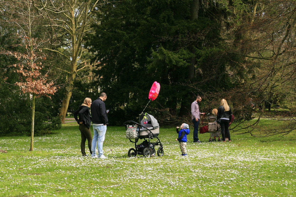 Family Balloon Day Families With Children Family Afternoon Family Fun Day  Family Time Friendship Fun Grass Group Of People Helium Balloon Leisure Activity Nature Outdoors Parent Parent And Child Parenthood Parenting Parents Parents And Children People Playing Togetherness Tree