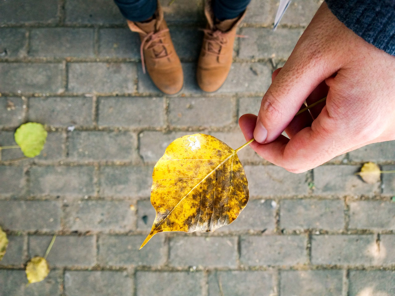 Yellow Human Hand Real People People Close-up Outdoors Autumn Autumn Colors Leaf Fallen Leaves Boots Autumn Is Coming Brick Pavement One Person Human Body Part Looking Down Samsungphoto Beauty In Nature Travel Maximum Closeness