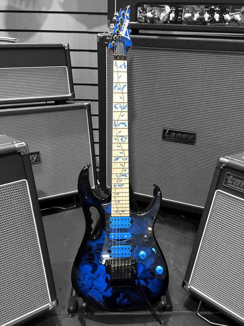 Ibanez Guitar Eye4photography  Guitarporn Laney