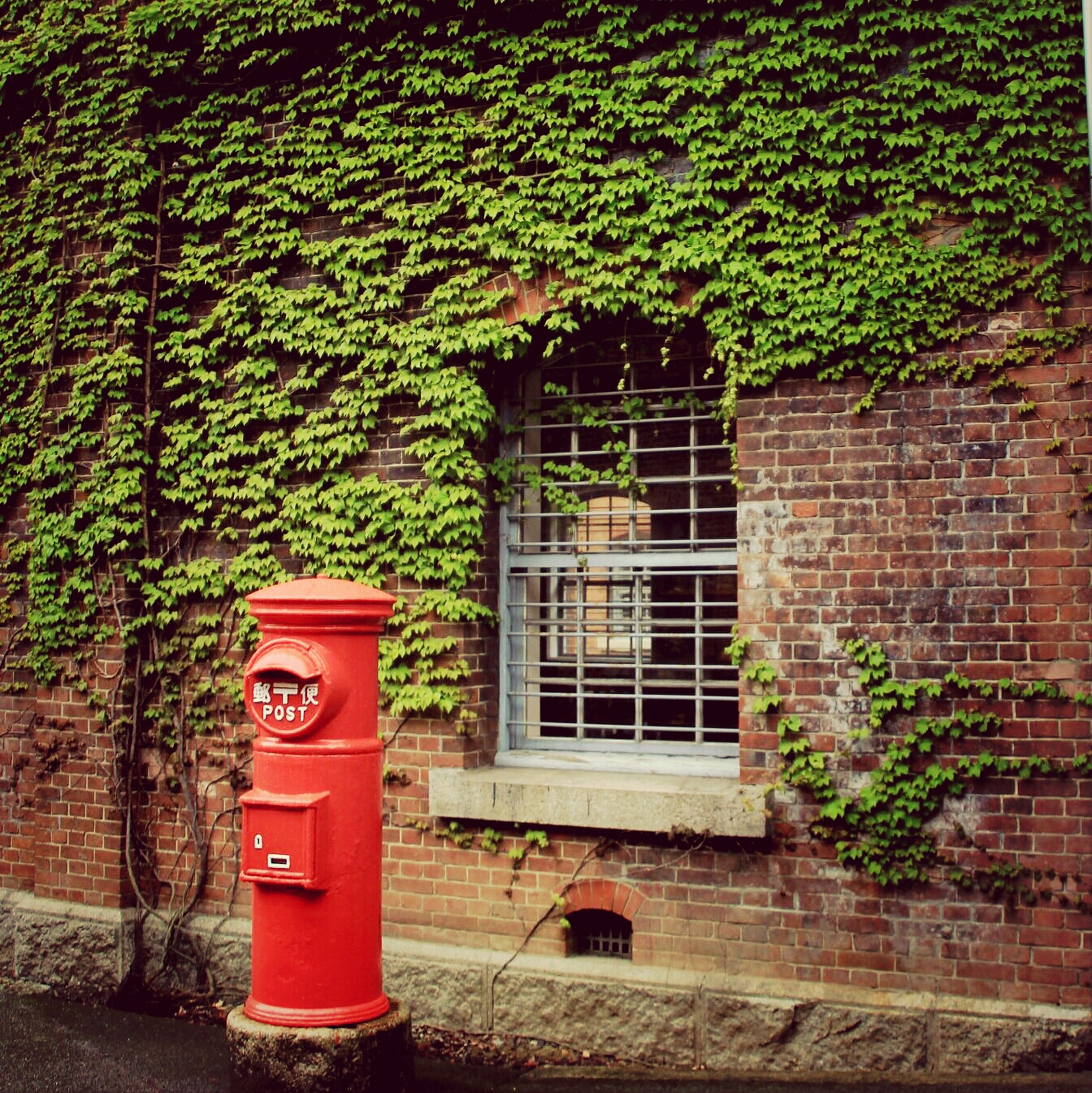 building exterior, architecture, built structure, red, plant, house, growth, window, brick wall, tree, closed, residential structure, door, wall - building feature, ivy, residential building, day, outdoors, no people, green color