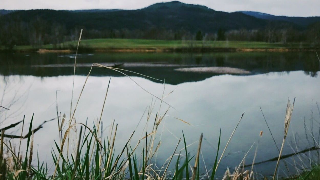 took this on my drive home today. the weather was overcast and rainy all day and served for some cool photos. Lake Reflection Grass Water Nature Tranquility Tranquil Scene Outdoors No People Scenics Day Beauty In Nature Growth Mountain Sky EyeEmNewHere