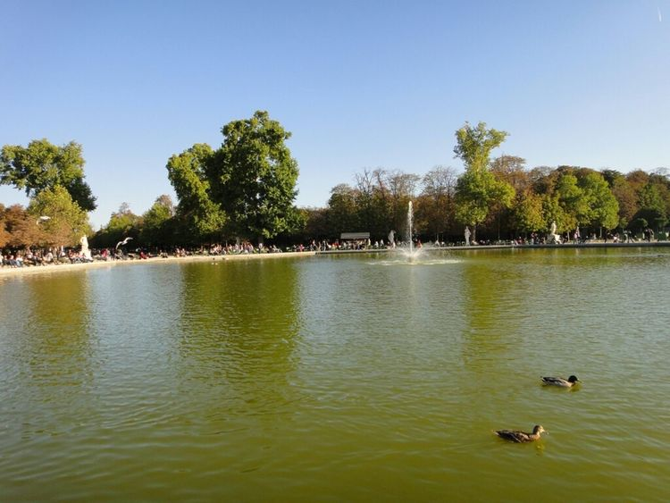 Paris Jardin Des Tuileries Lake