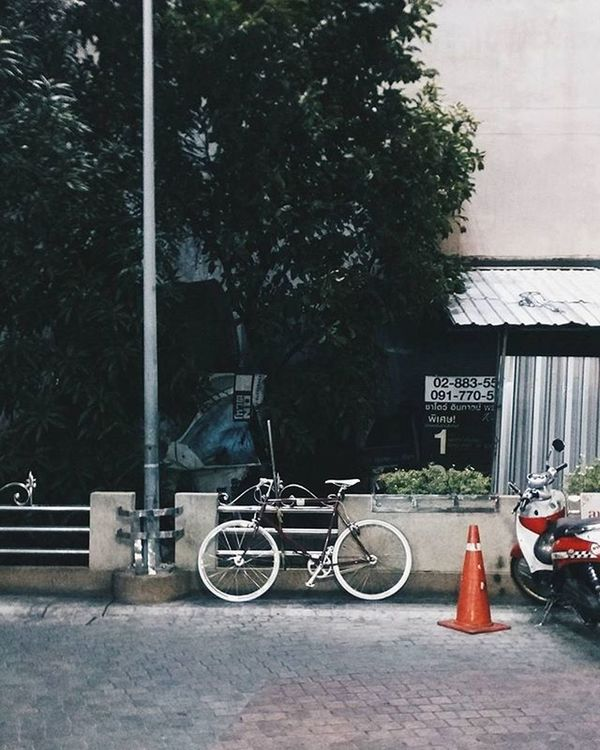 เมื่อคืนปั่นไปซื้อแซลม่อน Tokyobike Tokyobikethailand