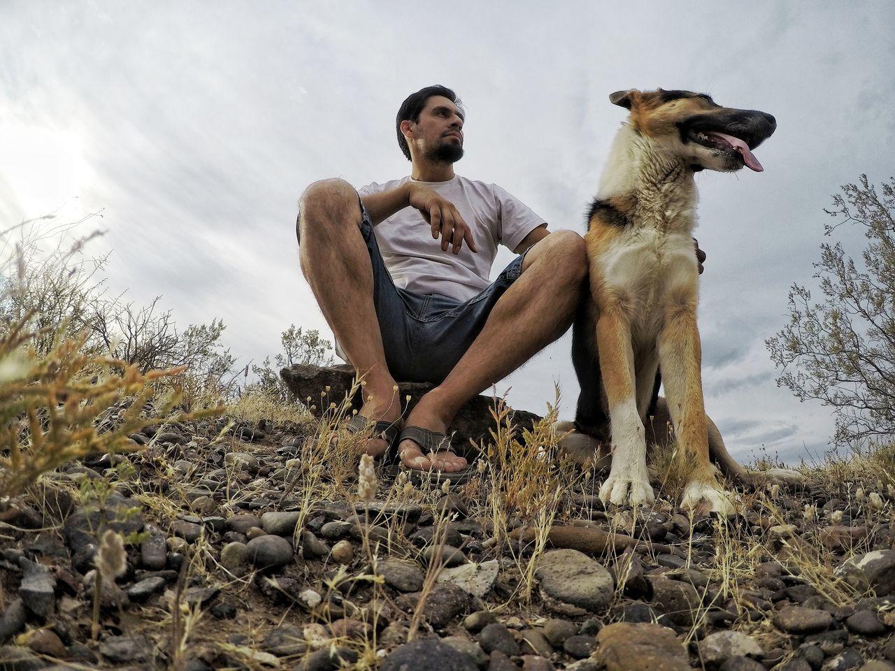 Animal Themes Domestic Animals Pets Dog Samsung Galaxy S4