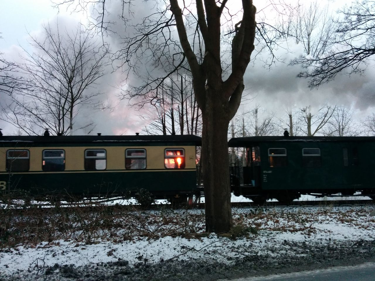 winter, snow, cold temperature, bare tree, tree, weather, transportation, mode of transport, rail transportation, nature, field, public transportation, railroad track, branch, outdoors, train - vehicle, no people, sky, landscape, day, beauty in nature, bleak