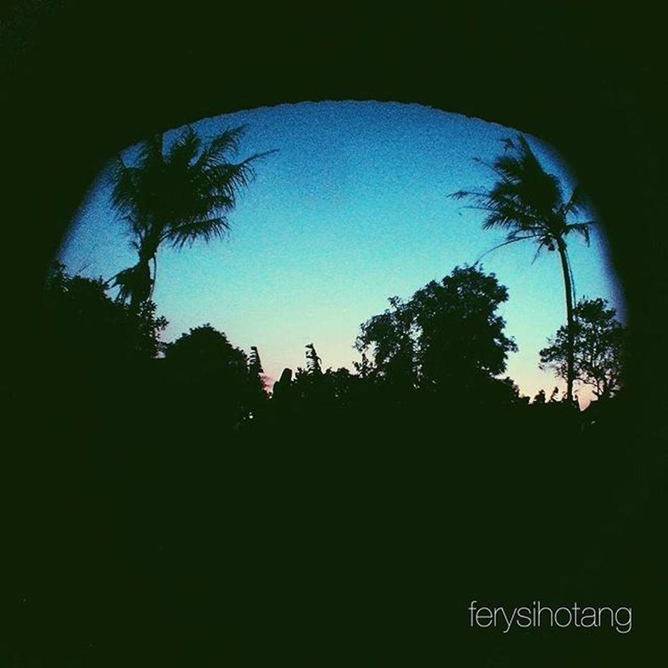 Backyard Sunset 180degree Vscocam