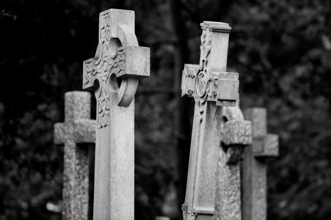 Black & White Old Cemetery Churchyard Burial Ground Graveyard Graveyard Beauty Blackandwhite Black&white Creative Photography Photography Canon Canonphotography South West London Monochrome Blancoynegro