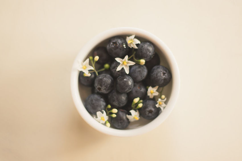 Berries Blueberry Bowl Close-up Eat Enjoy Flowers Food Food And Drink Freshness Fruit Healthy Eating High Angle View Indoors  Studio Shot Sweet Food White Background Yummy
