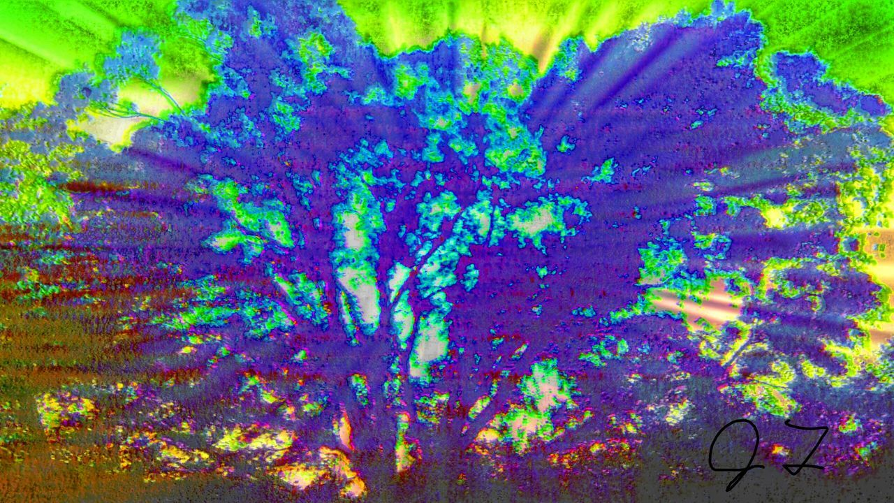 """The Innovator """"The Tree Of Life"""" Tree Color Colors Colorful ManyColors Art Photography Abstract Surreal Artphotography Fine Art Photography Magic The Magic Mission"""