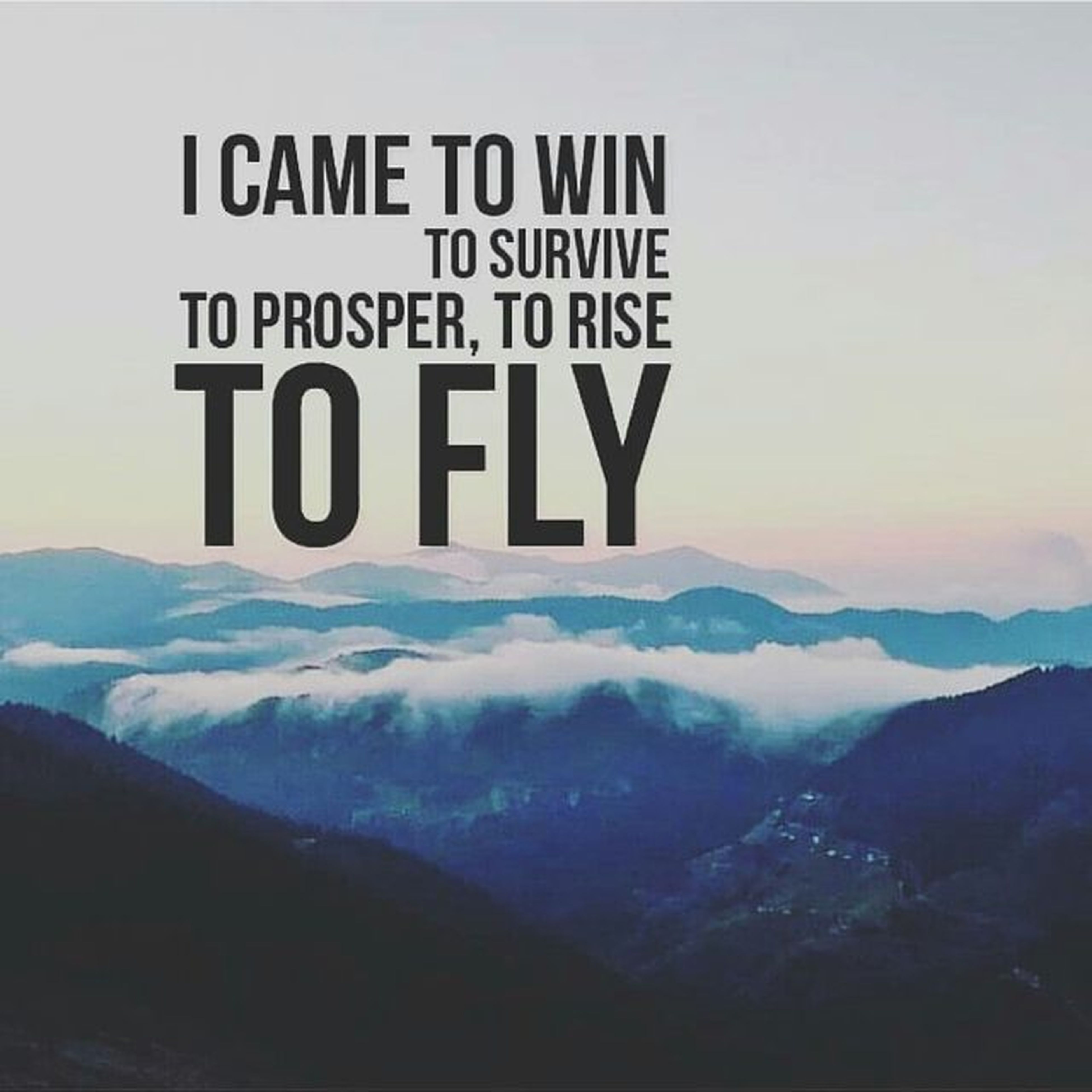 That's all!!! Mylife Icametowin Tofly Tosurvive Toprosper Torise Highmountain .Slogans Truesayings
