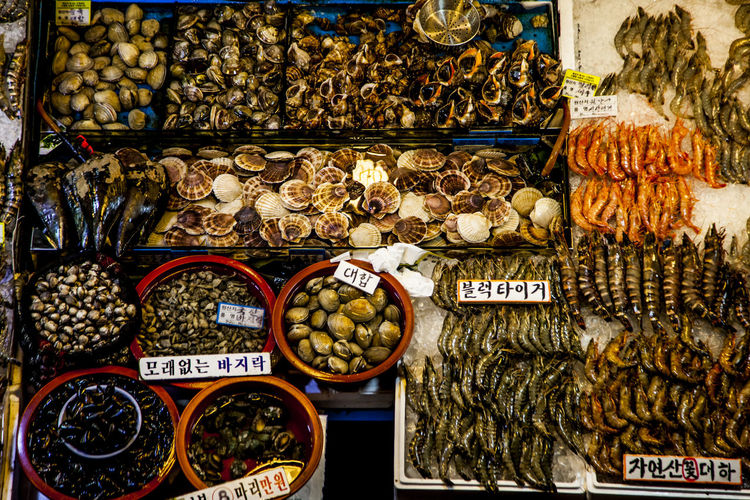 Abundance Arrangement Choice Display Fishery Market Food And Drink For Sale Indoors  Large Group Of Objects Market Market Stall Retail  Sea Cucumber Sea Squirt Seafood Makret Shell Shirimp Still Life Sweet Food Variation Showcase: November