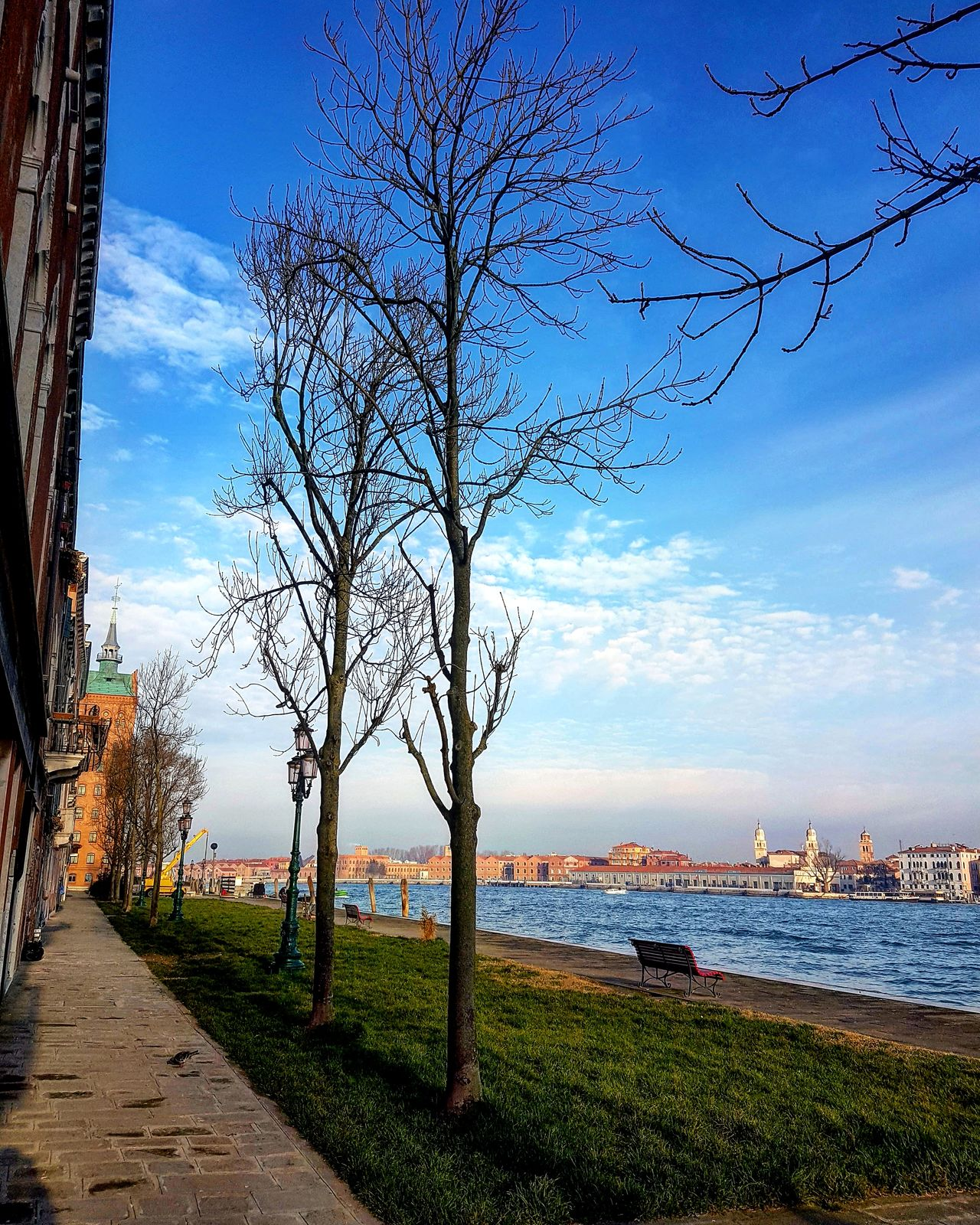 Isola della Giudecca, Venezia, Italy. Venice Italy Venice, Italy Venicelife Beauty In Nature Tree Tranquility Day Photo Of The Day Photooftheday City Landscape Blue Sky Beauty In Nature Spring Is In The Air Outdoors Amazing View Enjoying The View View Skyview Trees And Sky No People Nature Landscape_Collection Beautiful Day Sky Collection EyeEmNewHere