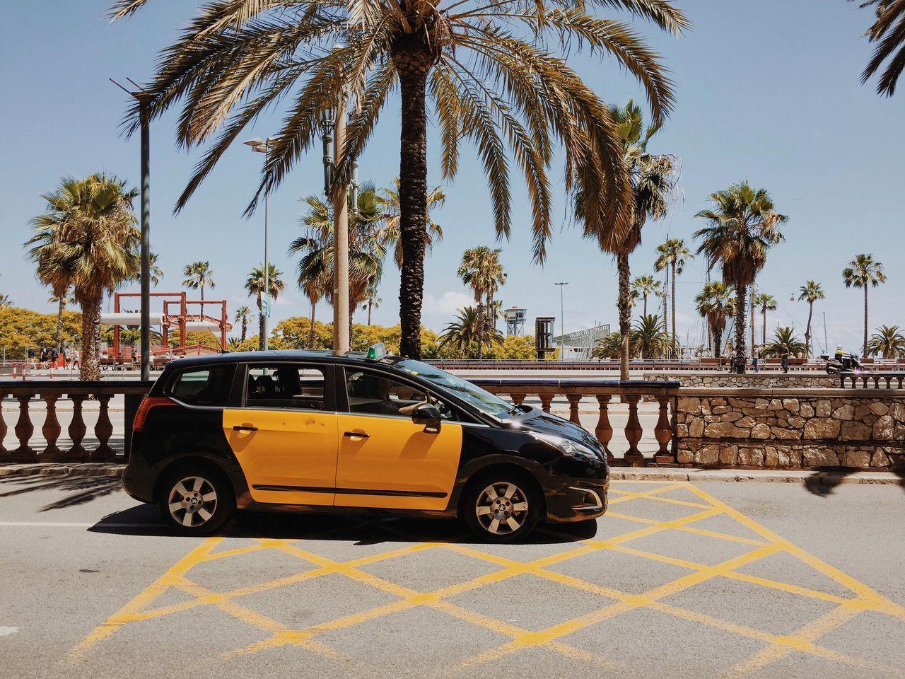 Canary cab. Palm Trees Sunshine Cruising Traveling Trip Taxi VSCO Vscocam Wanderlust Concrete Jungle