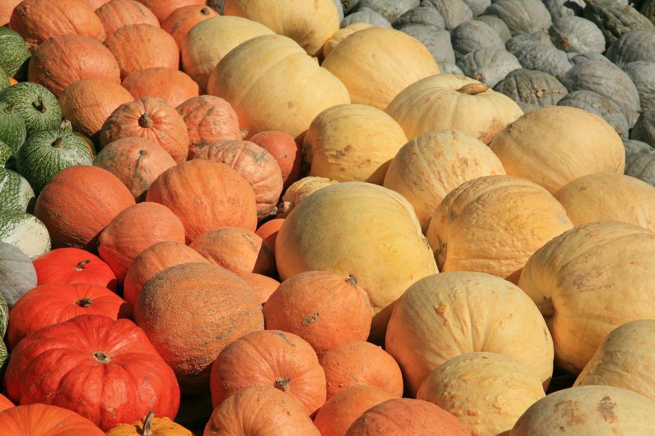 Beautiful stock photos of erntedankfest,  Abundance,  Backgrounds,  Day,  Food