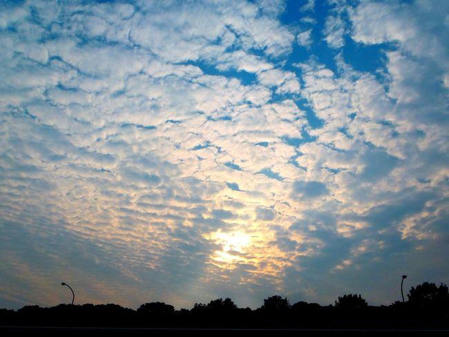 大空 Sky Is The Limit Cobalt Blue By Motorola