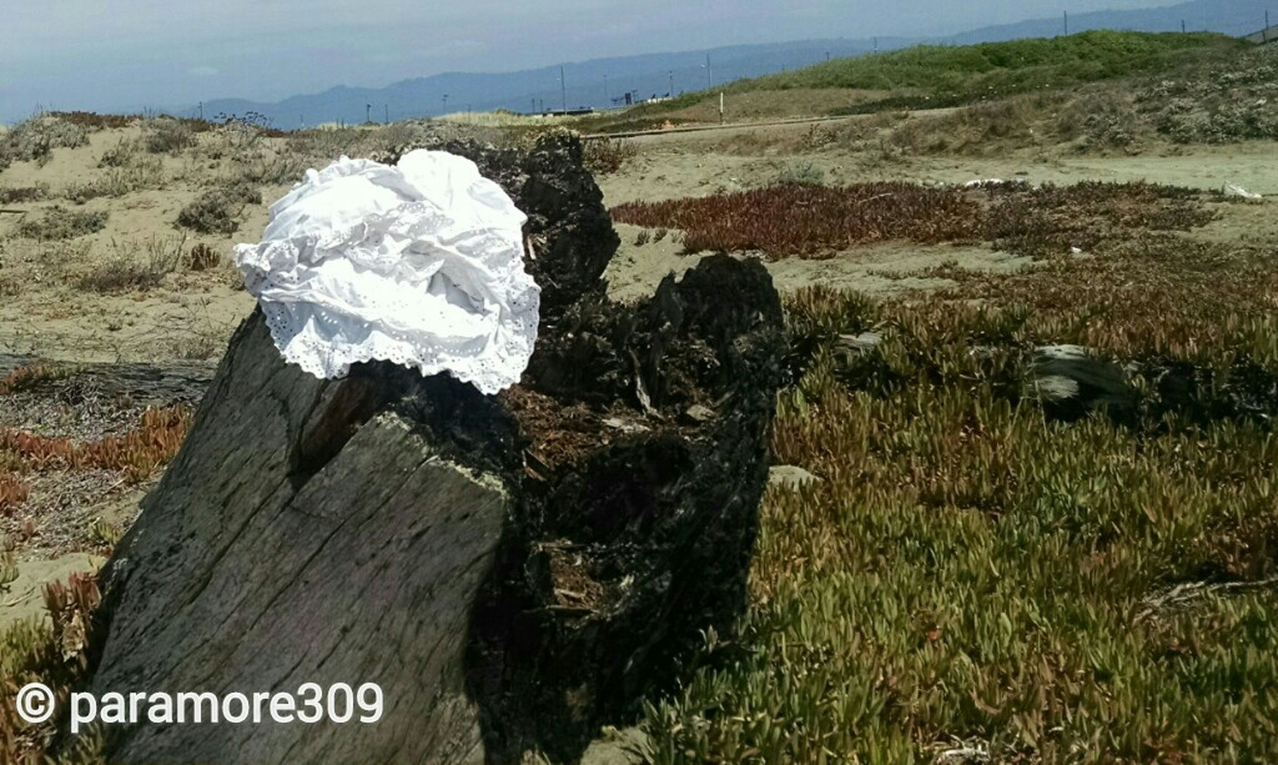 tranquility, water, text, grass, tranquil scene, nature, landscape, rock - object, western script, day, mountain, high angle view, non-urban scene, outdoors, scenics, beauty in nature, no people, communication, field, remote