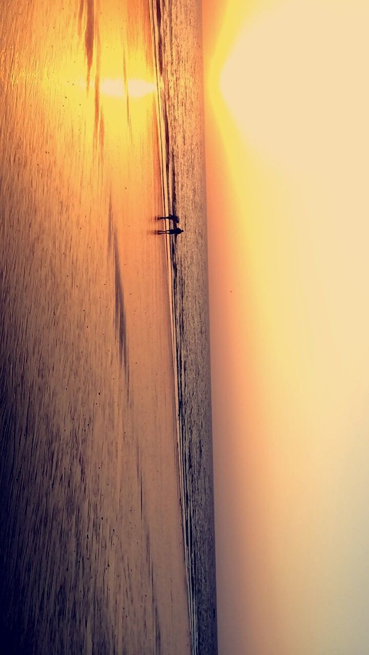 sunset, water, sea, tranquil scene, nature, tranquility, scenics, nautical vessel, beauty in nature, outdoors, horizon over water, silhouette, oar, sky, beach, real people, rowboat, men, rowing, day, sculling, jet boat, scull, one person, only men, people