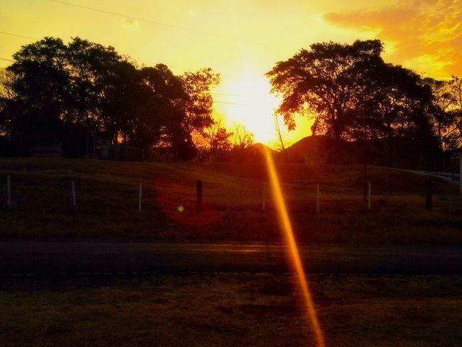 Arboles , Naturaleza By Pit O. Panamá Relaxing Cielo Amanecer 6am Flat Stone