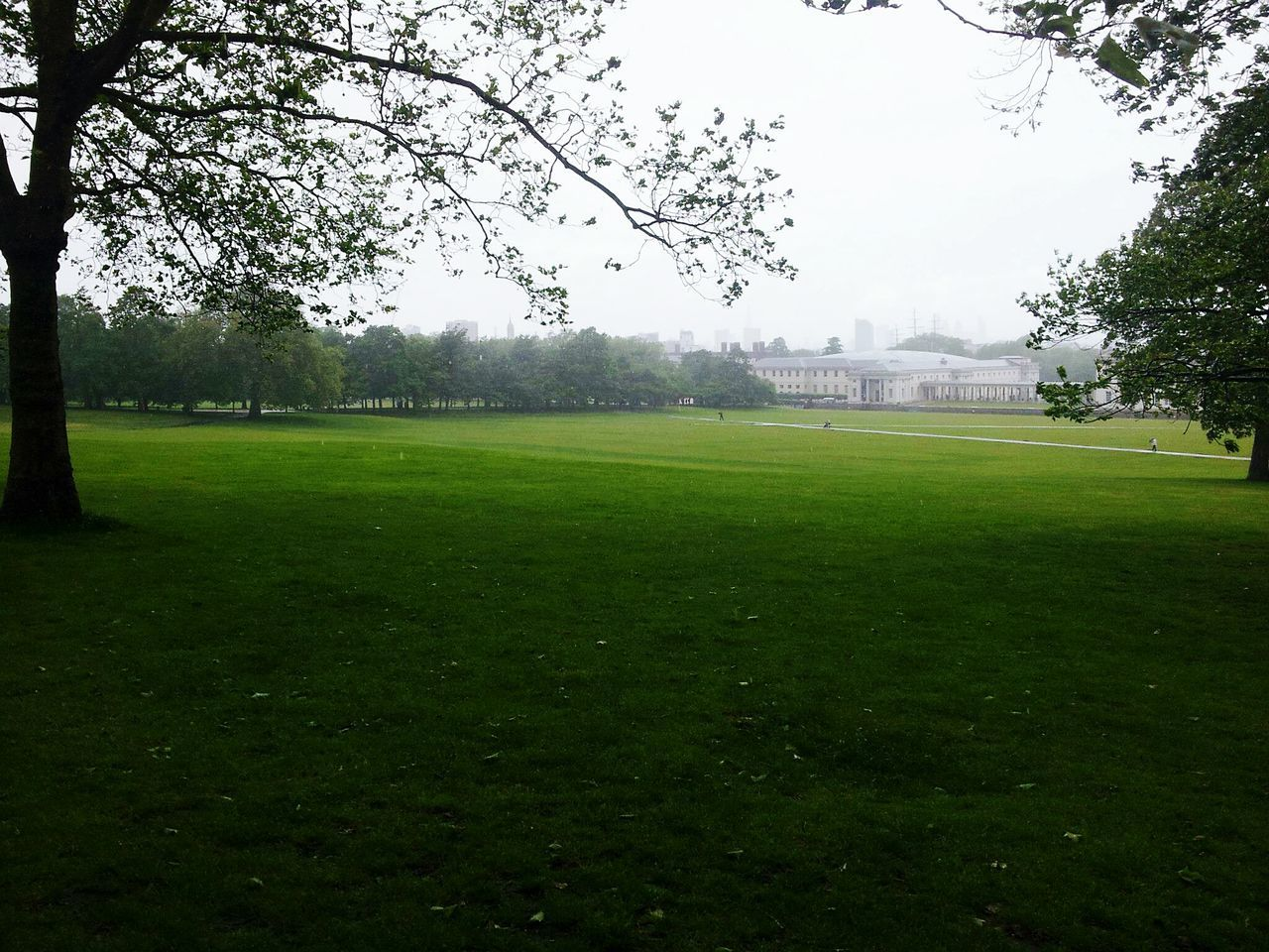 Greenwich Park Greenwich,London London Uk Tree Grass Playing Field Green Color Nature No People Soccer Field Sport Outdoors Sky Day Beauty In Nature