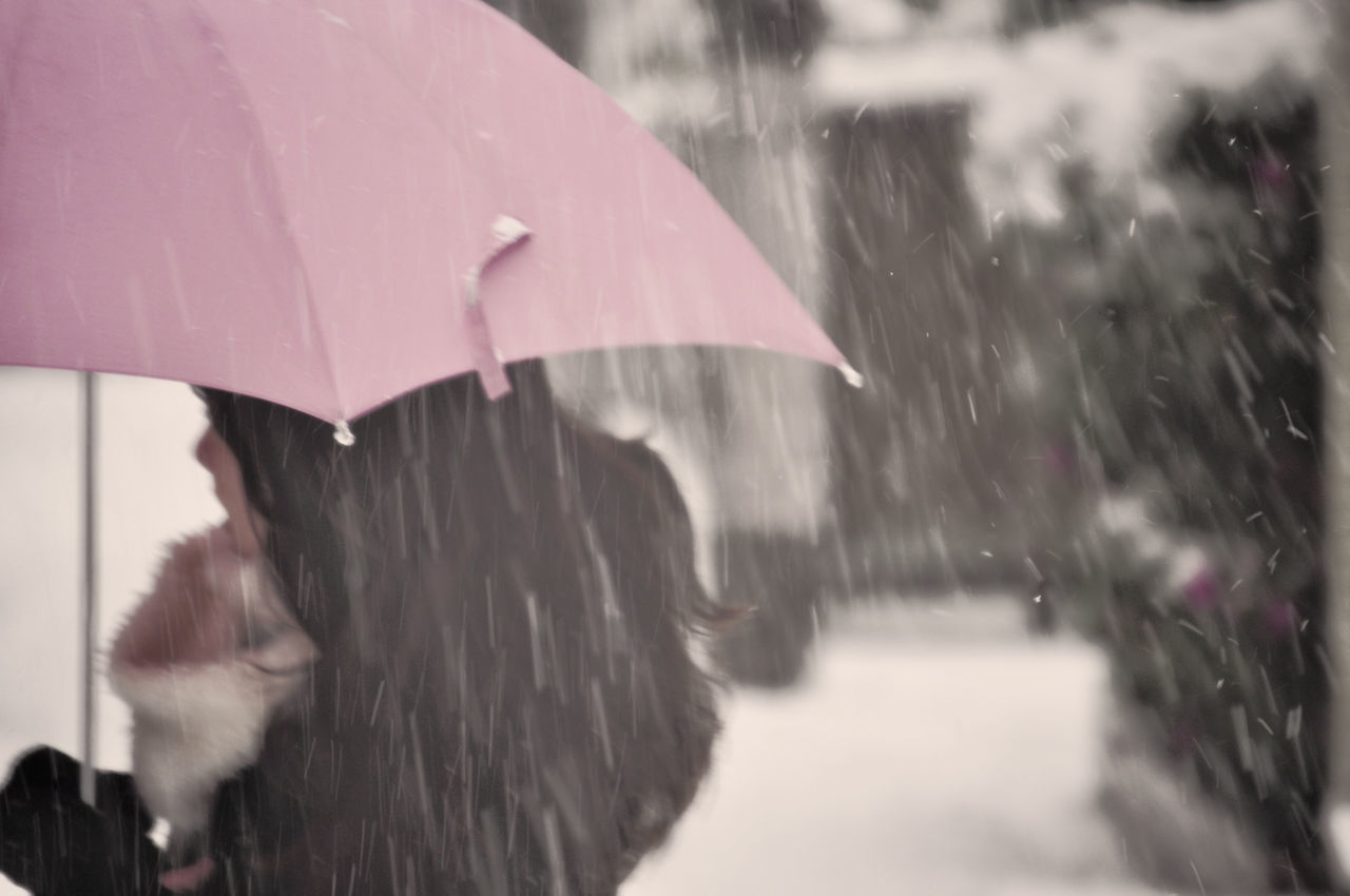 Beautiful stock photos of umbrella, Cold Temperature, Day, Falling, Frozen
