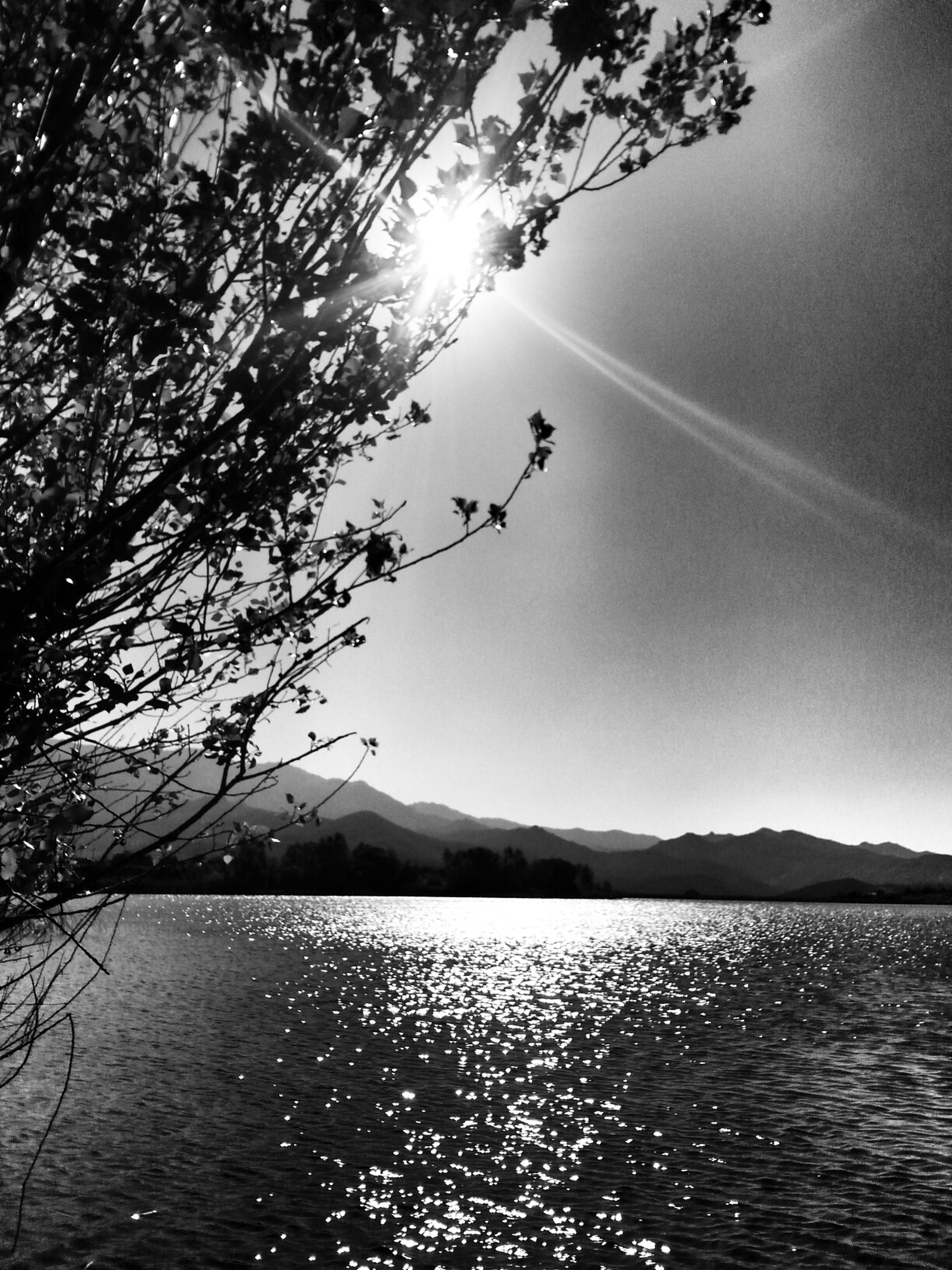 water, tree, tranquility, tranquil scene, scenics, waterfront, beauty in nature, nature, lake, sun, sky, sunlight, branch, silhouette, mountain, reflection, river, rippled, sunbeam, idyllic