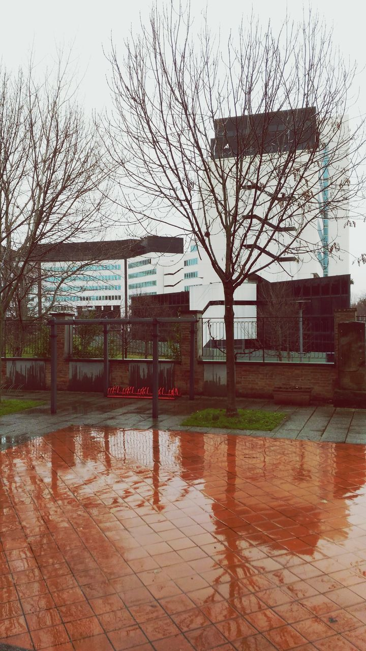 architecture, bare tree, water, built structure, building exterior, reflection, tree, no people, sky, outdoors, day, city, basketball - sport, nature
