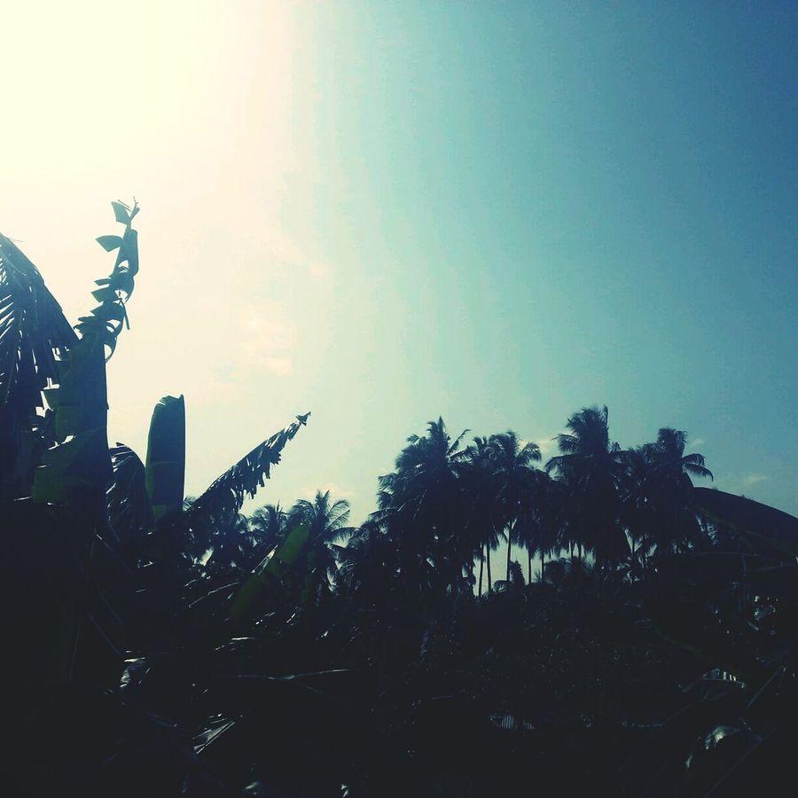 good morning! :) Taking Photos