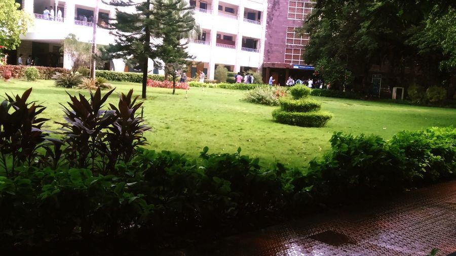SrmuniversitySrm university main block.Free hour Snap.