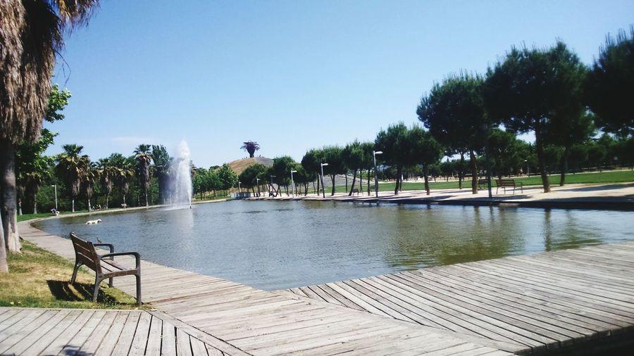 Vistas Madrid ParqueMadridRio