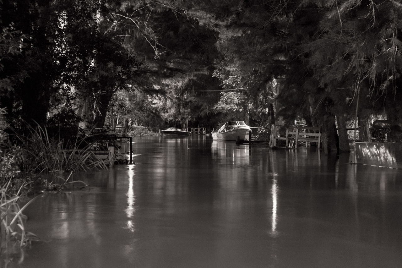 bosque inundado Blackandwhite Bridge - Man Made Structure Canales Canals And Waterways Eye4photography  Light And Shadow Mode Of Transport Mypoint Of View Nature Nautical Vessel Reflection River Riverside Scenics Transportation Water Water Reflections Waterways