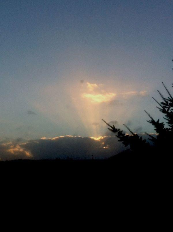 Sol Cielo Sun