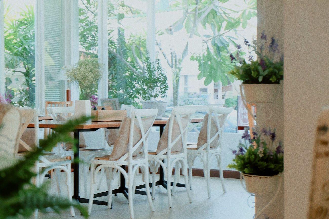 Cafe Modern Architecture Chiang Mai | Thailand Fujifilm_xseries Fujixa2 Meenphtgrph