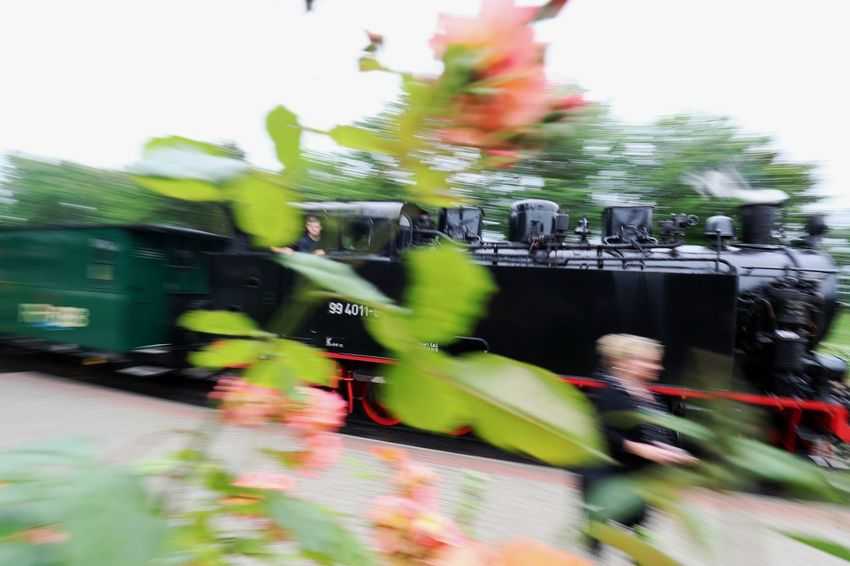 Blurred Motion Day Motion No People Outdoors Rasender Roland  Speed Steam Locomotive