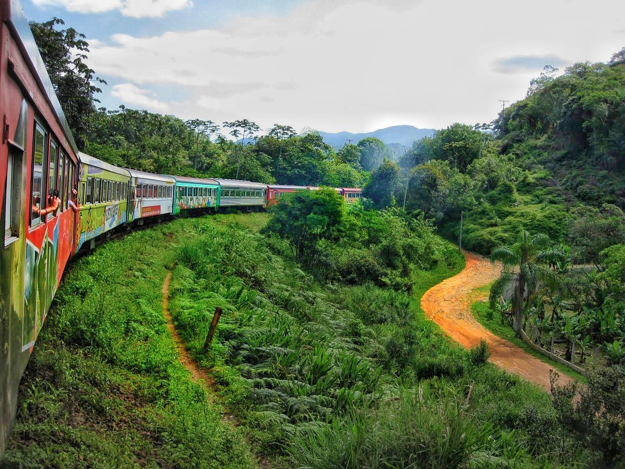 Transportation Green Color Grass Nature Sky Beauty In Nature Outdoors Train Trainphotography Brasil Serra Verde Express Paranaguá Lifestyle Jungle Eyem Gallery Traveling Travel Lifestyles Travel Destinations Forest Finding New Frontiers Traveling Home For The Holidays