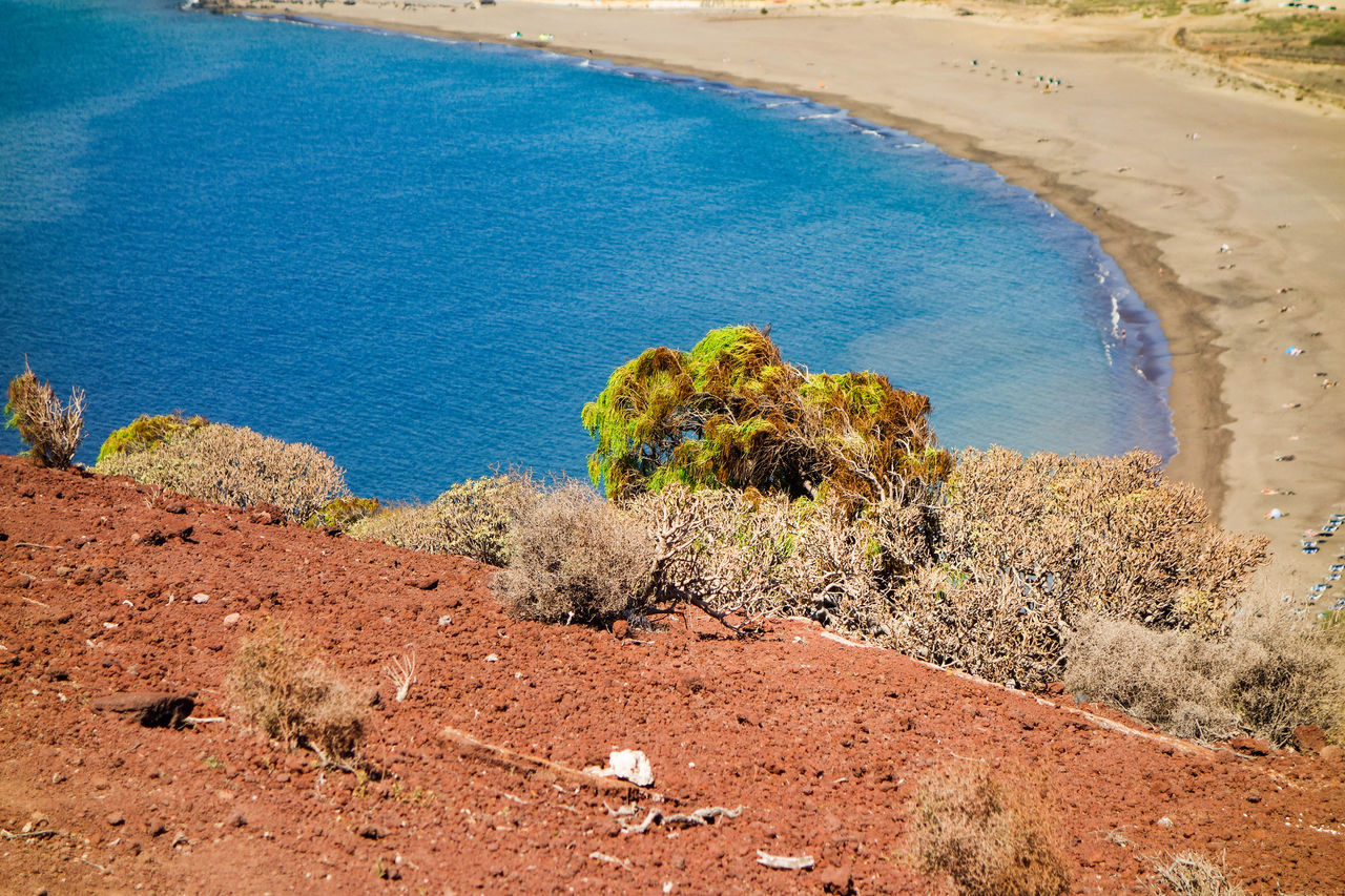 Beach Beauty In Nature Canary Islands Dry Land Ecosystem  Explorer Going For A Walk Hot Weather Island Kanarische Inseln Landscape Médano Nature Ocean Outdoors Plant Sand SPAIN Tenerife Tenerife Island Teneriffa Tourism Traveler Traveltheworld Water