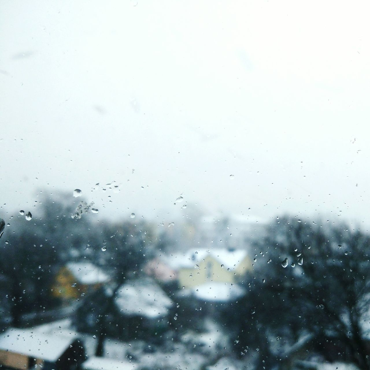Glass - Material Rain Weather Drop Wet Window Rainy Season Transparent RainDrop Condensation Monsoon Water Nature Sky Looking Through Window No People Cloud - Sky Day Back To School Winter First Eyeem Photo EyeEm Snow ❄ Minimalism Eyeemphoto
