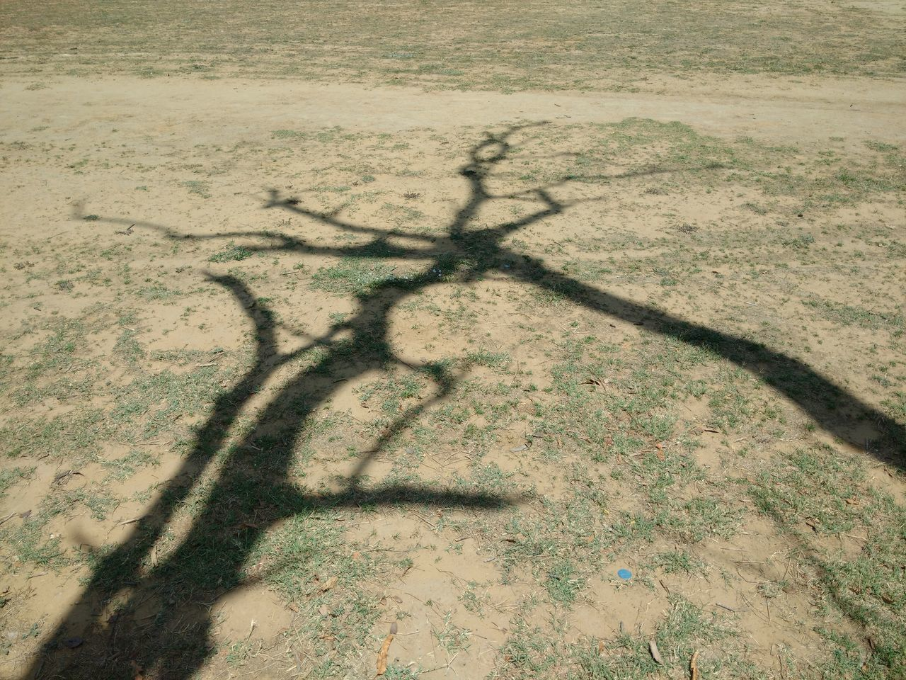 Shadow Sunlight Outdoors No People Nature High Angle View Focus On Shadow Day Ground View Shapes And Lines No Filter, No Edit, Just Photography Nature_collection Natural Pattern EyeEm Best Shots Eyem Gallery Landscape Grass Photography Beautiful Nature