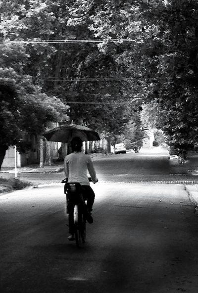 Bicicleta Bycicle paraguas Dias De Lluvia lluvia Cinderella paseo