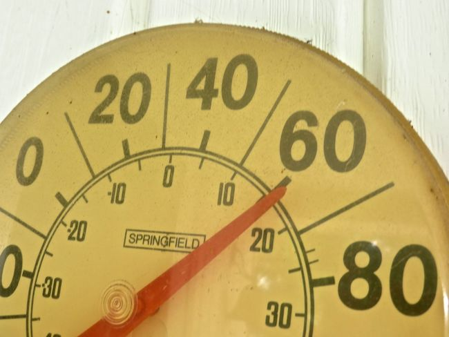 Close-up Farenheit Gauge No People Numbers Temperature Text Thermometer