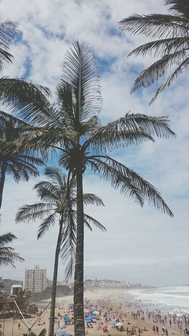 Perfect weather. Perfect day. ? Margate Beach Margate South Africa Africa Beach Palm Trees Beauty Photography