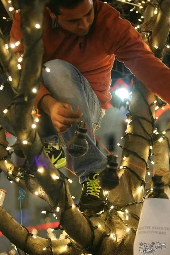 Just in Palestine Nativity Church put Gas bombs and hand bombs that Israeli army throw on children on Christmas tree to show the world the truth Bethlehem Nativity Church
