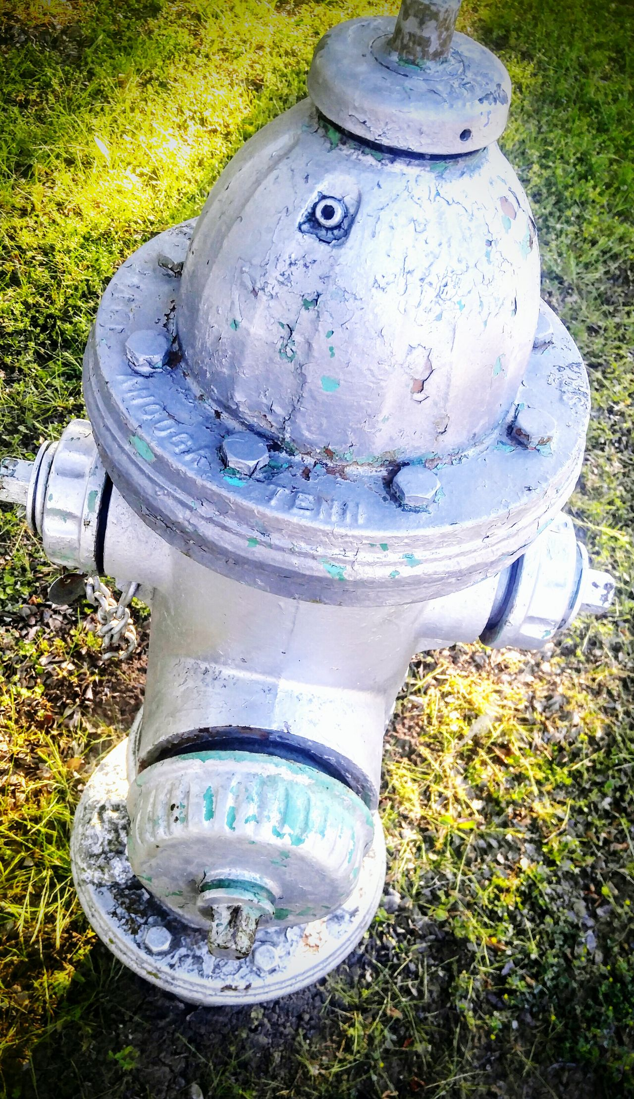 Outdoors High Angle View Grass No People Fire Hydrant Day Field Lid Blue Close-up Flushing Toilet Metal The Street Photographer - 2017 EyeEm Awards