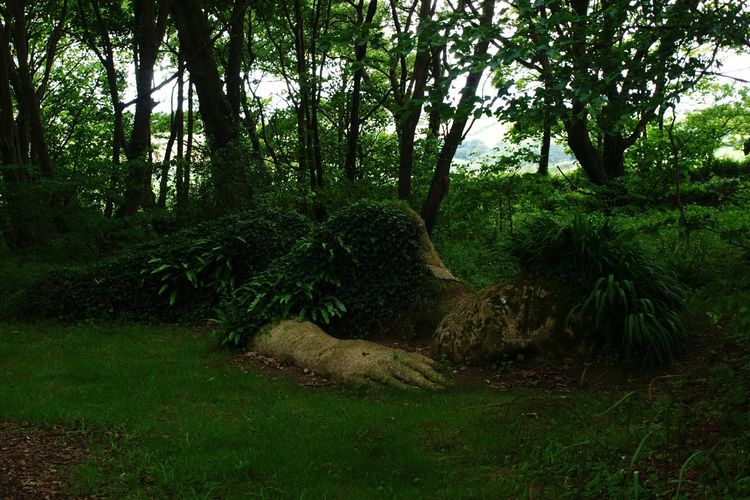 Sculpture Statue of a Lady Trees Plants Greenery Forest Art Giant at Lost Gardens Of Heligan