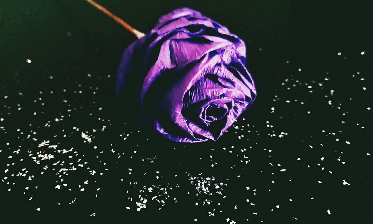 Self Made Purple Rosé Flower with Crepe Paper ! Craft Handmade and Art !