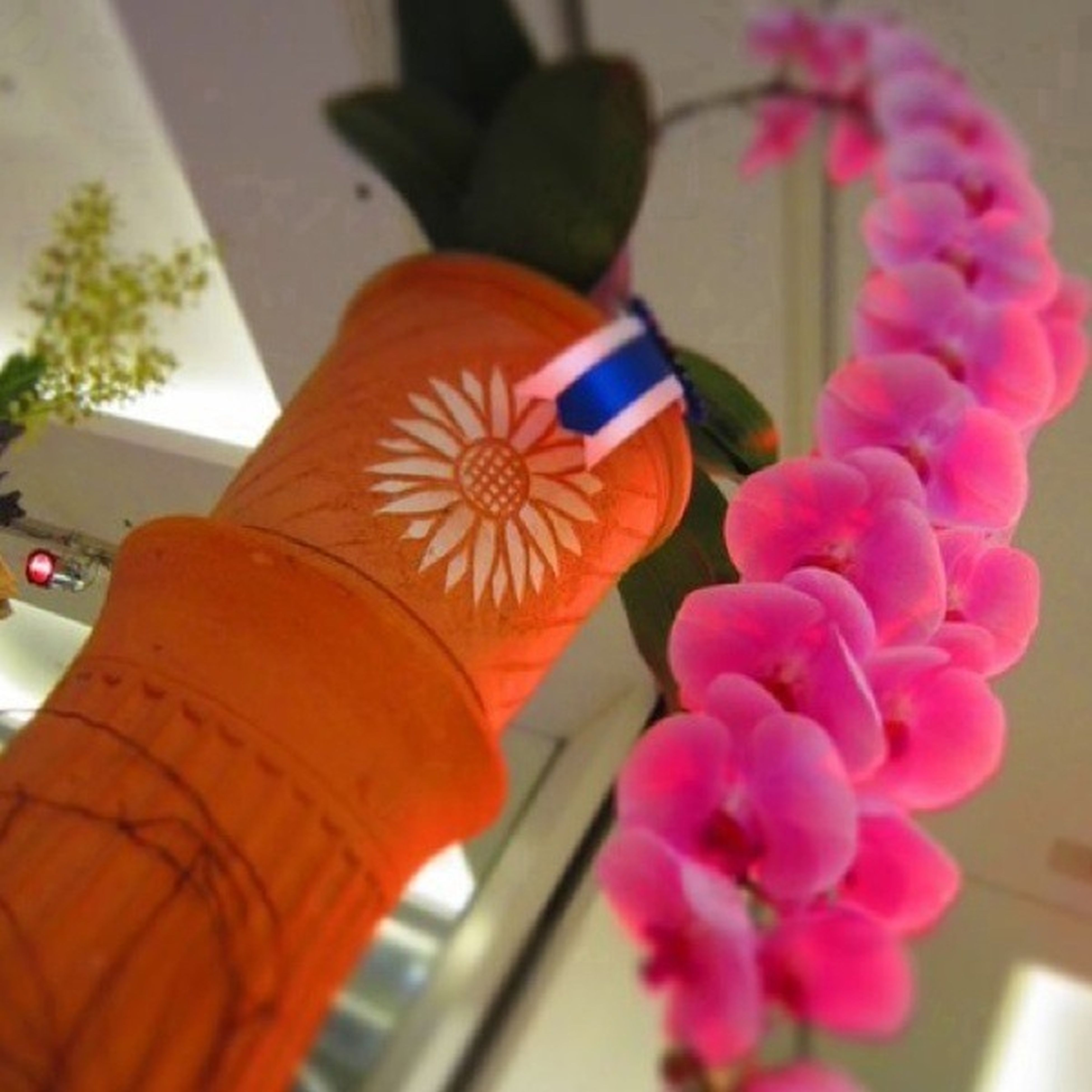 flower, focus on foreground, close-up, multi colored, pink color, indoors, decoration, part of, day, no people, cropped, fragility, selective focus, animal representation, toy, low angle view, art and craft, hanging, nature