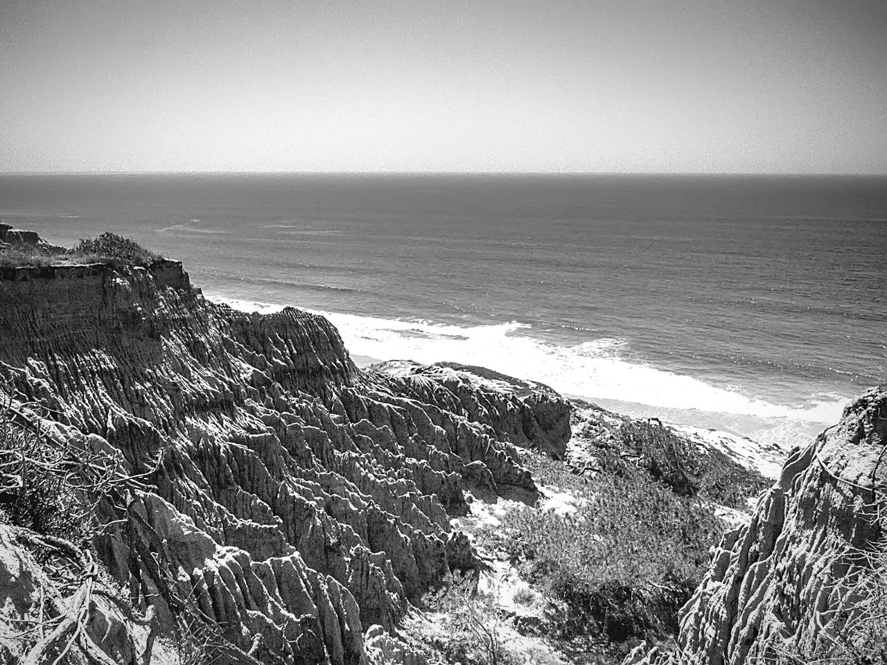 Erosion on Sandstone Cliffs at Torreypines state park San Diego California Blackandwhite Nature Landscape Pacific Ocean