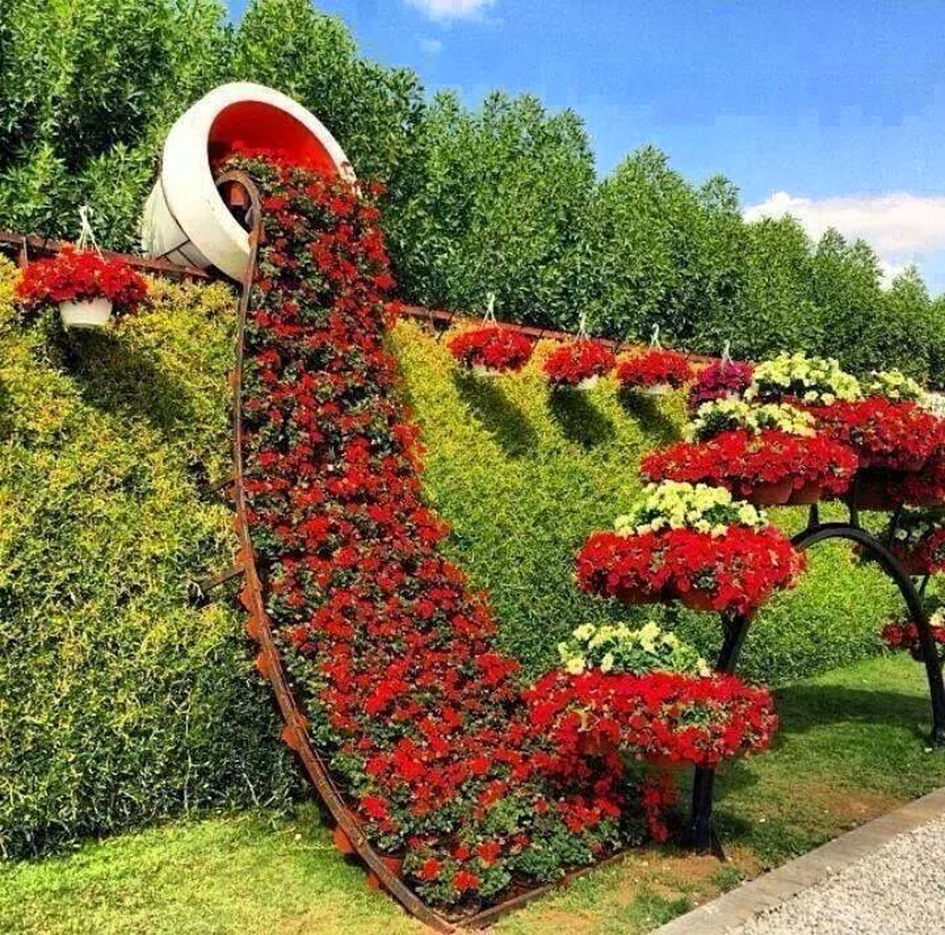 tree, growth, red, grass, park - man made space, flower, green color, plant, nature, field, sky, day, outdoors, sunlight, beauty in nature, garden, tranquility, lawn, park, no people