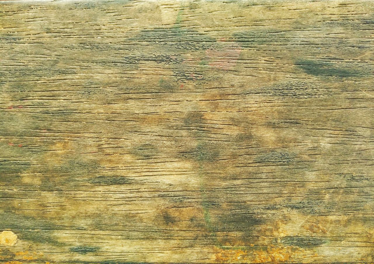 backgrounds, textured, wood grain, full frame, abstract, pattern, wood - material, no people, hardwood, close-up, wood paneling, nature, indoors, day