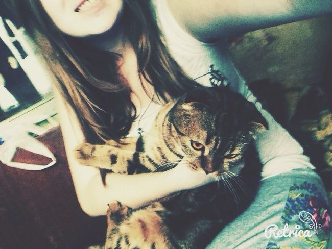 Cat Me Cat&me